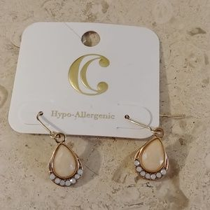 Charming Charlie Dangle Earrings